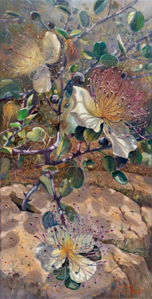 Capers -Symbol of strong Israel, Painting by Alex Levin
