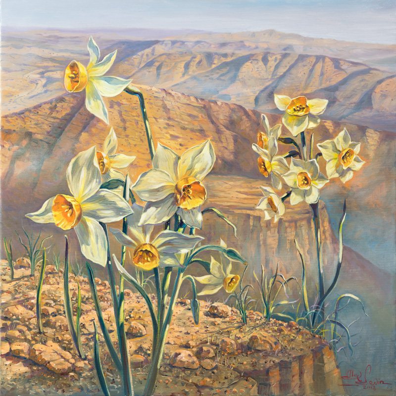 Daffodils in the Judean Desert, Painting by Alex Levin