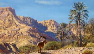 painting of israel desert