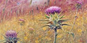 flowers of israel