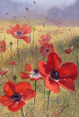 poppy flowers painting