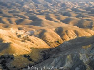 Photo of Israel Desert